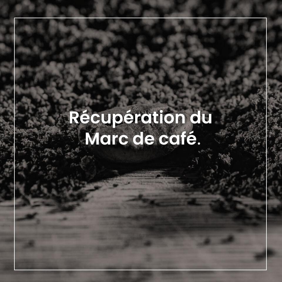 Marc de café | Lemahieu